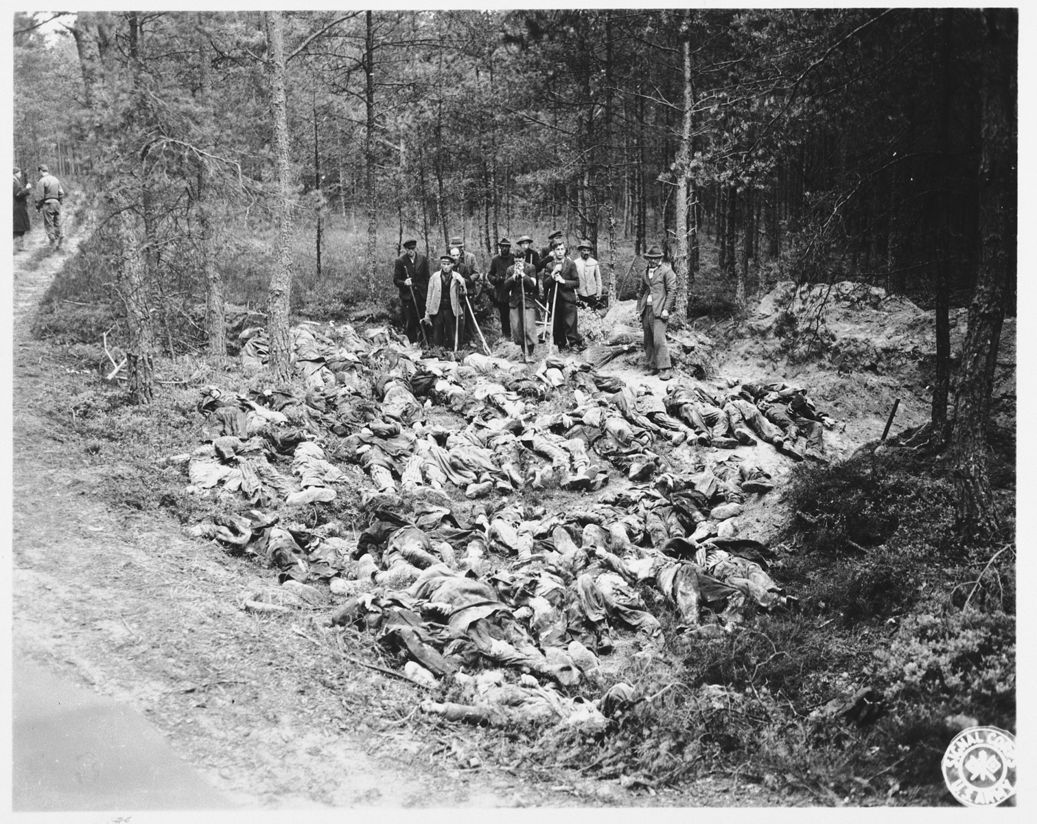 A group of German civilians stand with their shovels among the corpses of Nazi victims they have just exhumed from a mass grave in Stamsried, Germany.  (Photograph taken by the 166th Signal Corps Company.)