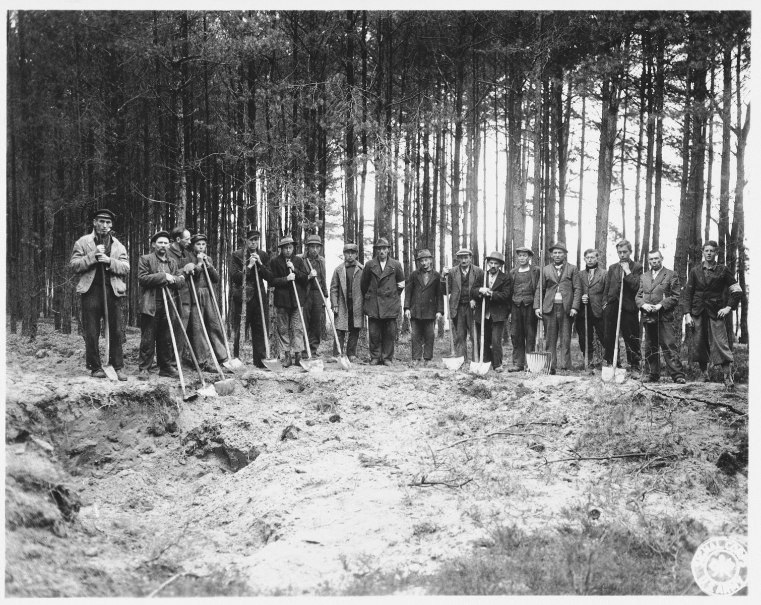 A group of German civilians stand with their shovels along the edge of a mass grave in Stamsried, Germany, which they have been charged with exhuming.  (Photograph taken by the 166th Signal Corps Company.)