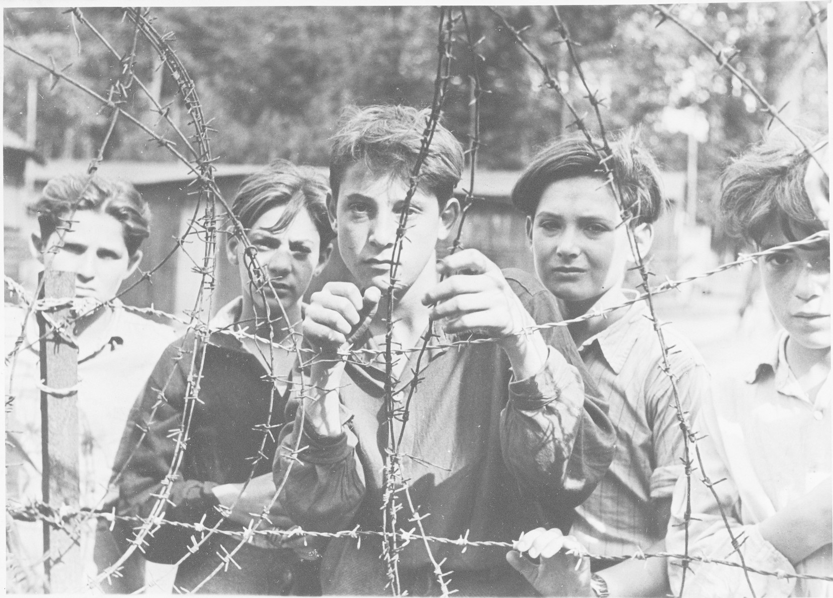 Teenage boys look through the barbed wire fence in the Poppendorf displaced persons' camp after their forcible return to Europe.