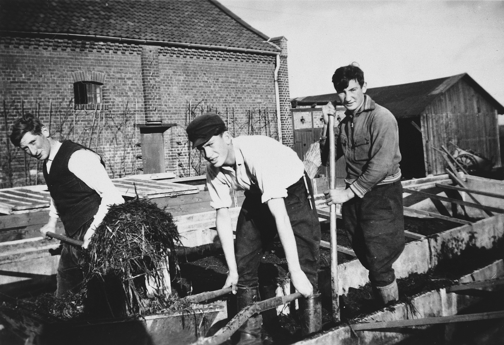 Three Jewish-German youth learn agricultural skills at a training farm in Dahlem on the outskirts of Berlin.  Ernst Meyer is standing on the far left.