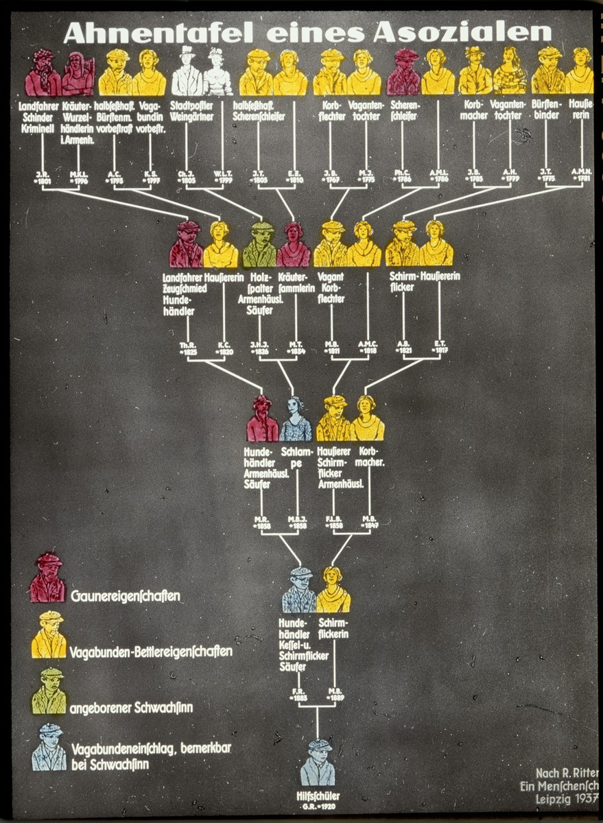 "Color glass slide of a genealogical chart of an ""asocial"" individual, who was the product of a line of ""asocial individuals."""