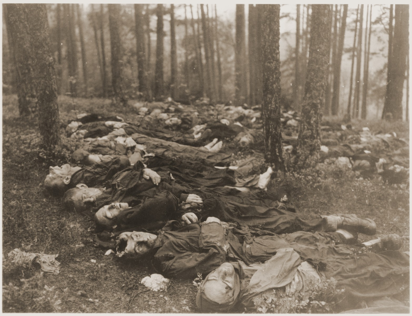 The bodies of Polish, Russian, and Hungarian Jews in the woods near Neunburg vorm Wald.  The victims were prisoners from Flossenbuerg who were shot near Neunburg while on a death march.