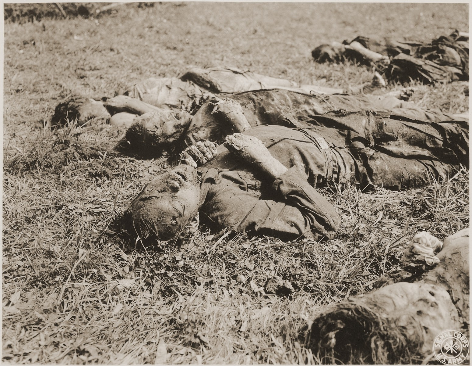 The corpses of male prisoners exhumed from a mass grave near Hirzenhain lie out in a field.