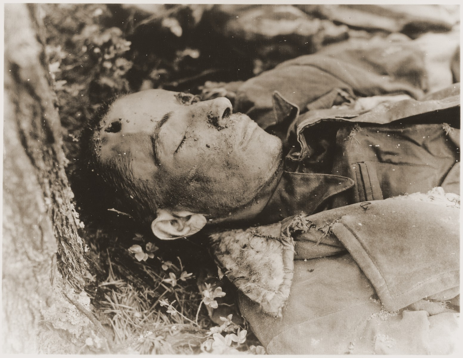 The body of a prisoner found in the woods near Neunburg vorm Wald.  The victim was one of many Hungarian, Polish, and Russian Jews from Flossenbuerg who were shot near Neunburg while on a death march.