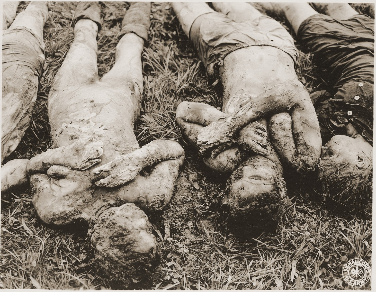 The corpses of prisoners exhumed from a mass grave in the vicinity of Hirzenhain lie out in a field.