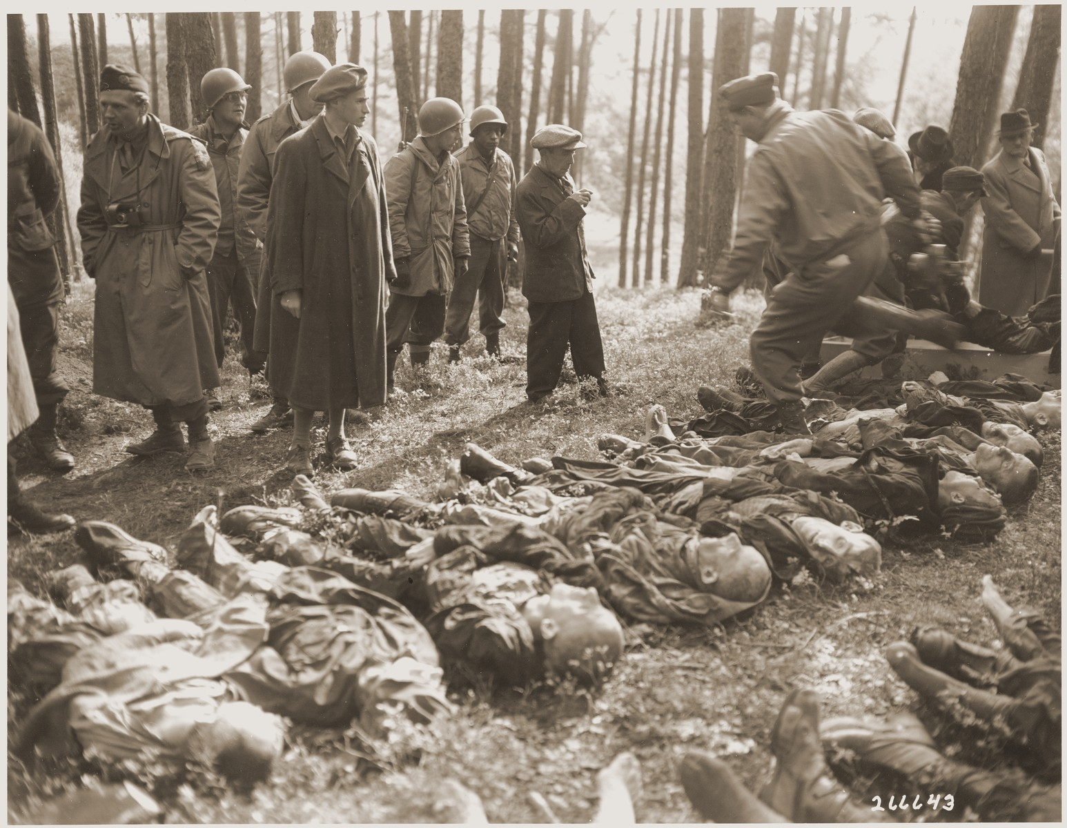A seventeen-year-old Hungarian Jewish boy identifies the body of his father, who was among the concentration camp prisoners from Flossenbuerg shot in the woods near Neunburg vorm Wald while on a death march.