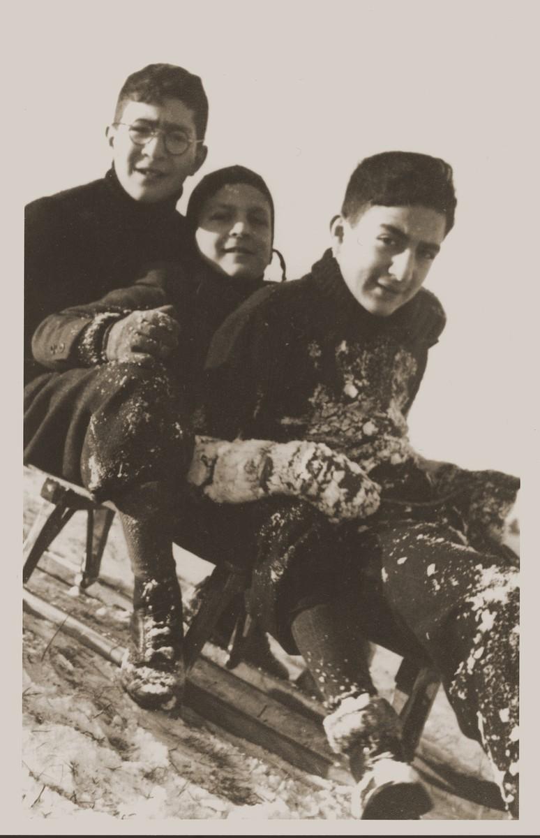 Amos, Binyamin and Shmuel Rabinovitch riding on a sled.