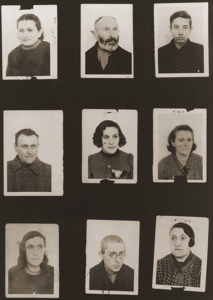 """A sampling of the more than 300 identification card photos of local Jewish residents that were found on the floor of the Gestapo headquarters in Biala Rawska in January 1945.   They were discovered by Leon Sztubert, a Jewish survivor from the town, who spent the war in hiding in a nearby forest.  Pictured (from the top row left and moving across each row) are Helena Borensztajn; Shaja Mendel Sajdas; Yosel Yosek Mogielnicki; Yosel Herschkowitz (b. 1912); Bluma Grinwald; wife of the Shamash; Leah Grinwald; """"young friend in Biala Ghetto""""; and """"Fanja from Ghetto Biala in 1941""""."""