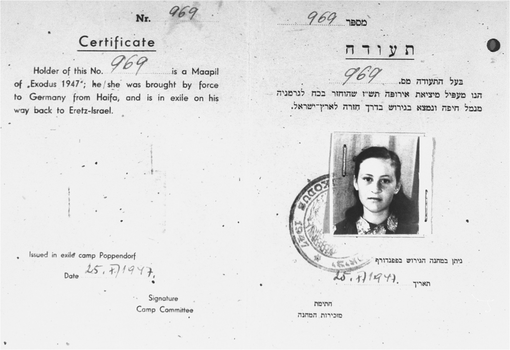 """DP identity card, issued by the Jewish administration of the Poppendorf displaced persons camp, certifying that Cilia Rudashevsky was an illegal immigrant aboard the Exodus 1947, who was brought back to Germany against her will, and who """"is in exile on [her] way back to Eretz-Israel""""."""