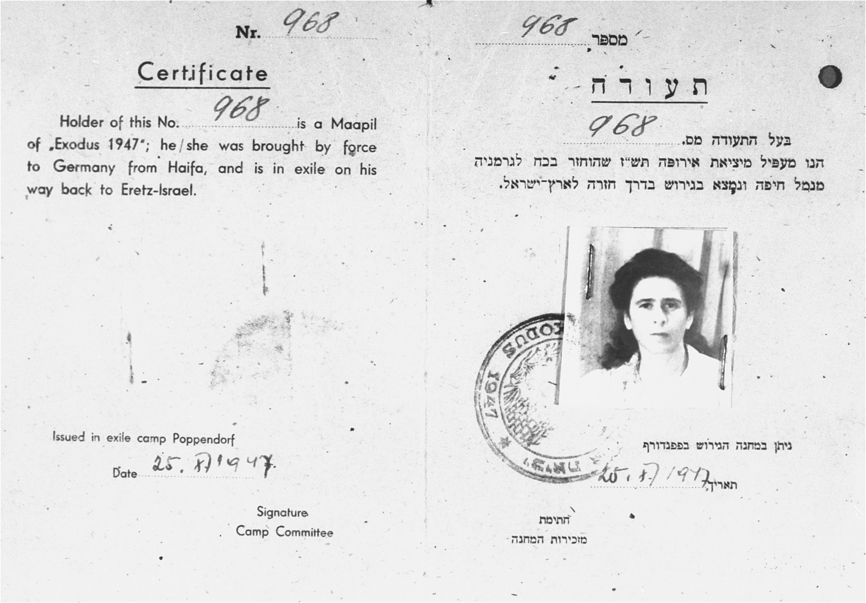 """DP identity card, issued by the Jewish administration of the Poppendorf displaced persons camp, certifying that Rosa Rudashevsky was an illegal immigrant aboard the Exodus 1947, who was brought back to Germany against her will, and who """"is in exile on [her] way back to Eretz-Israel""""."""