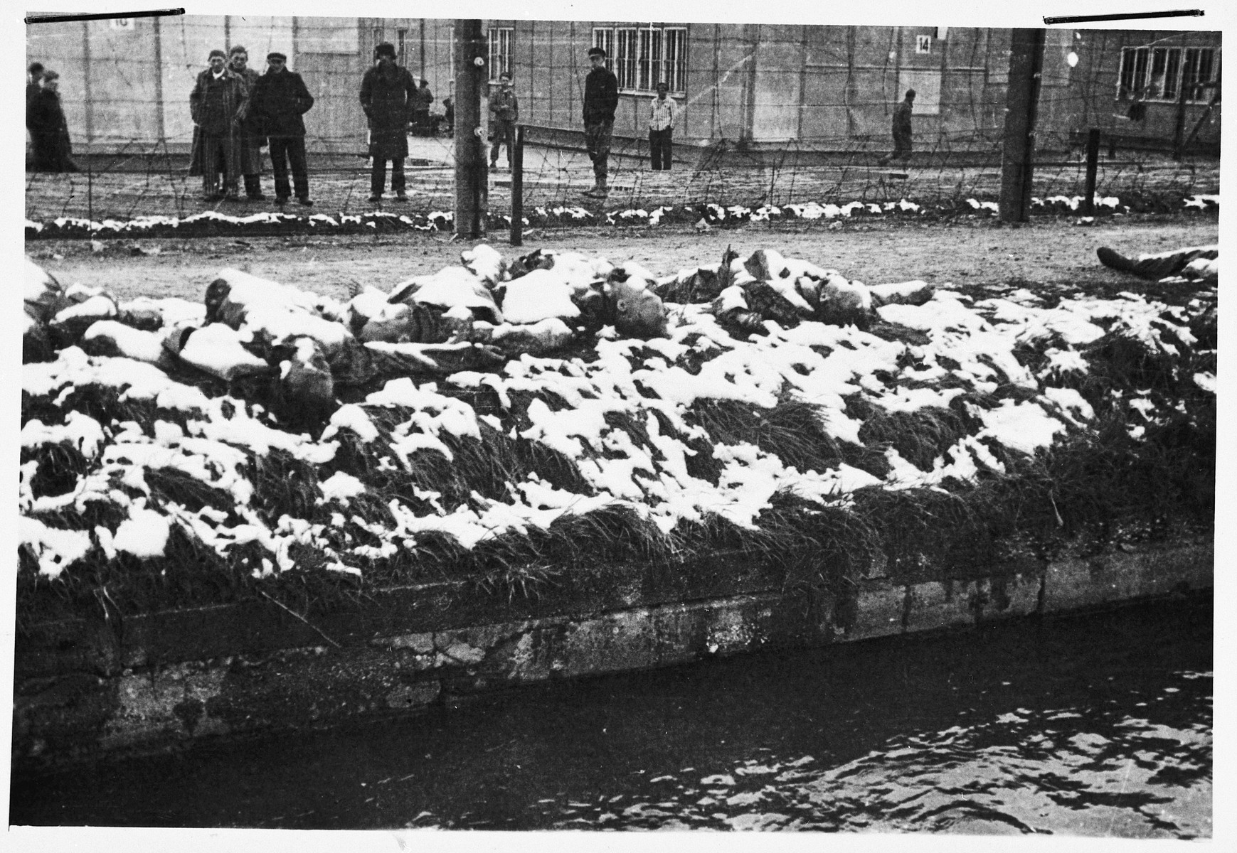 Survivors stare at a line of corpses partially hidden by snow lying next to the Dachau moat; [these might be former SS guards killied in revenge.]