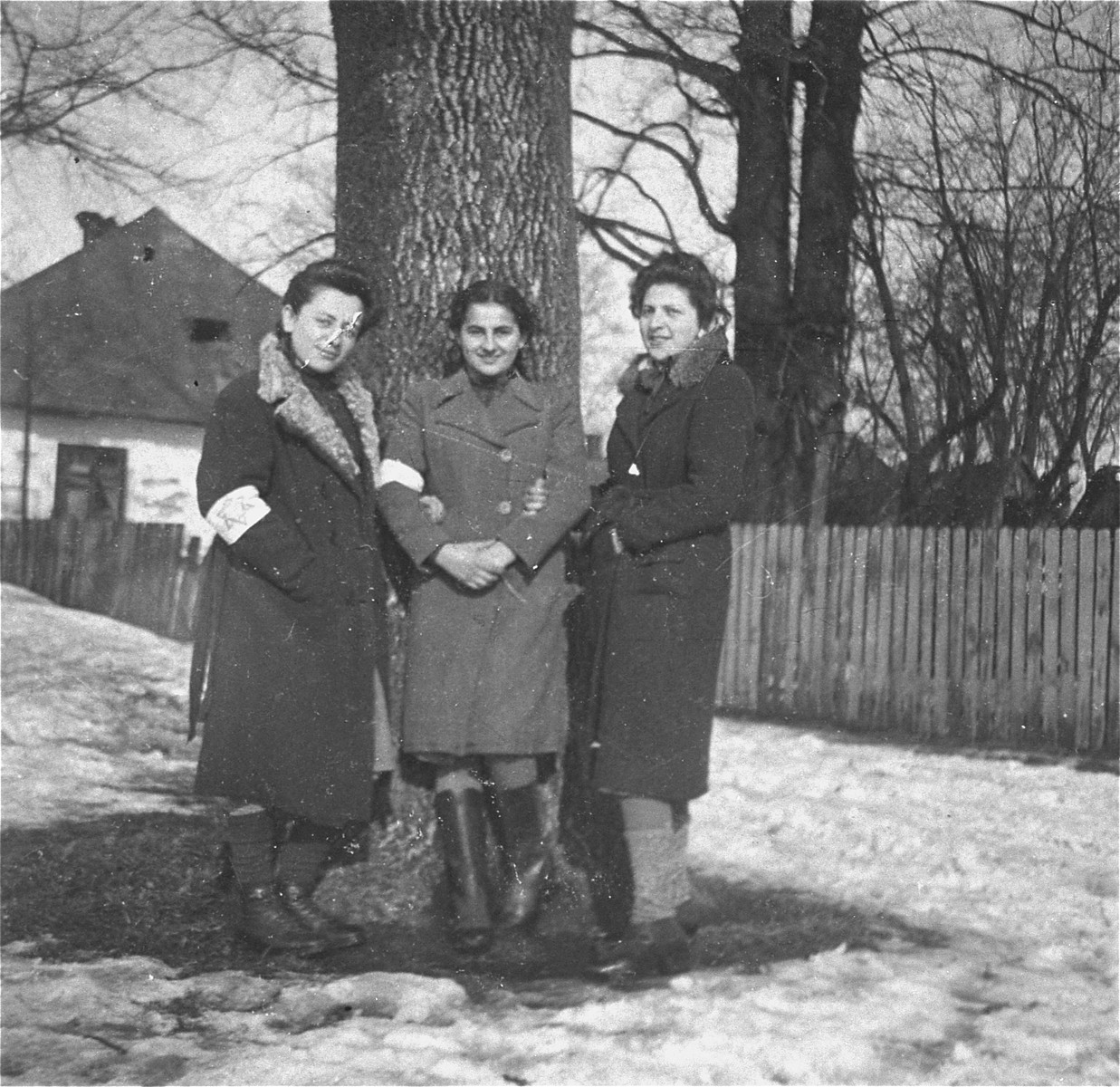 Three young women pose in front of a tree in the Kolbuszowa ghetto.    Pictured at the right is Niunia Notowicz.