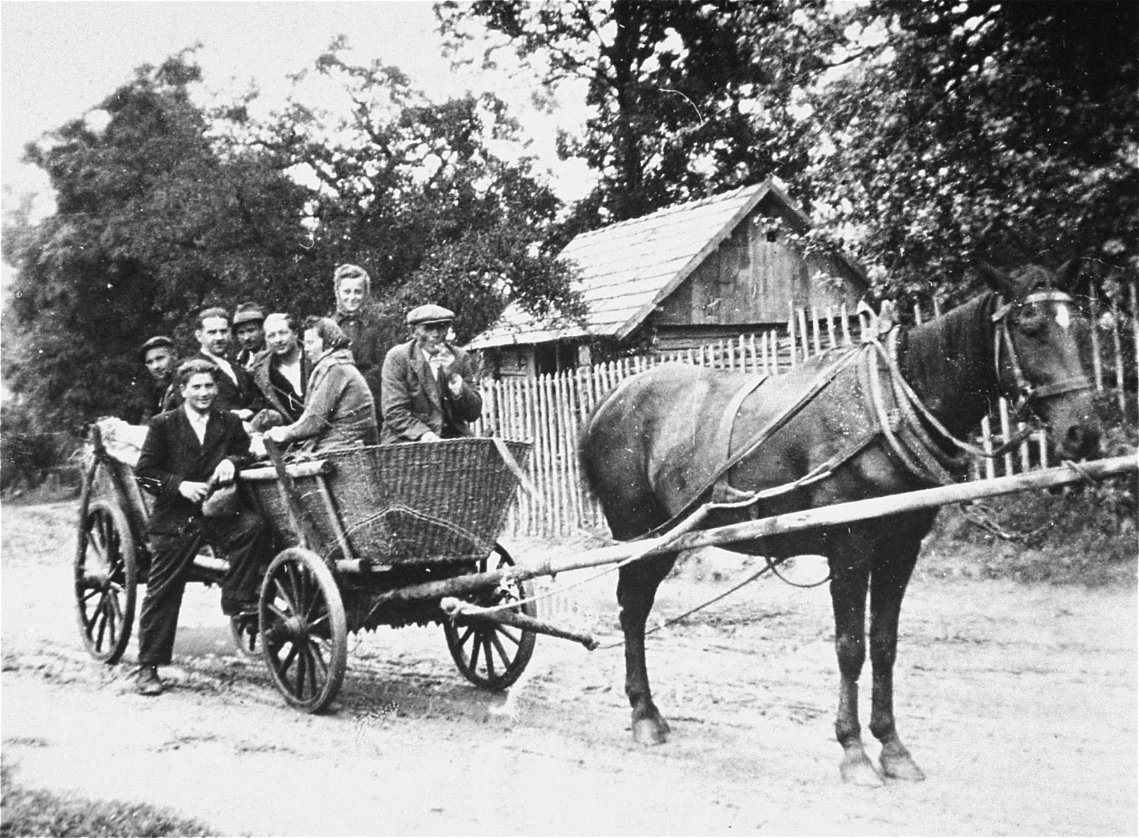 Jews traveling by horse-drawn wagon in Kolbuszowa after the war.  Among those pictured is Manius Notowicz (standing next to the wagon).
