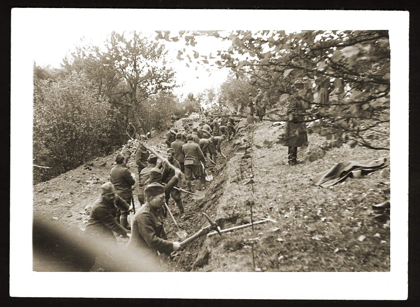 Jewish soldiers in the Slovak army dig a long trench.   The Jewish units were assigned to manual labor and not permitted to carry weapons.