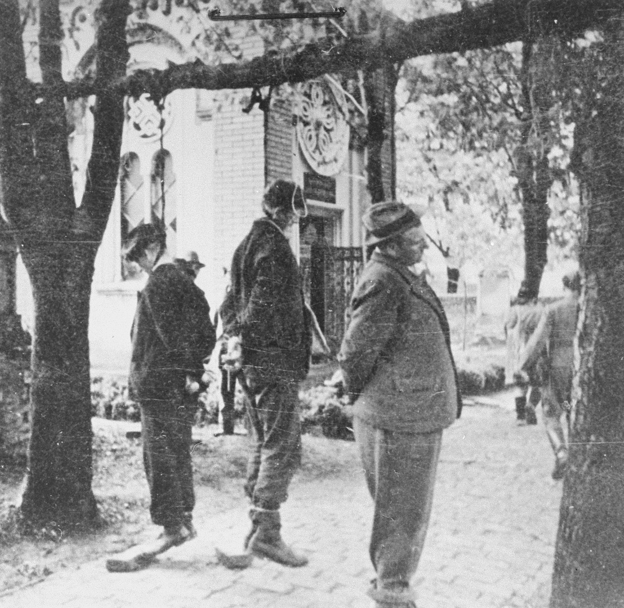 The bodies of civilians executed by German troops, hang in the Pancevo city cemetery.