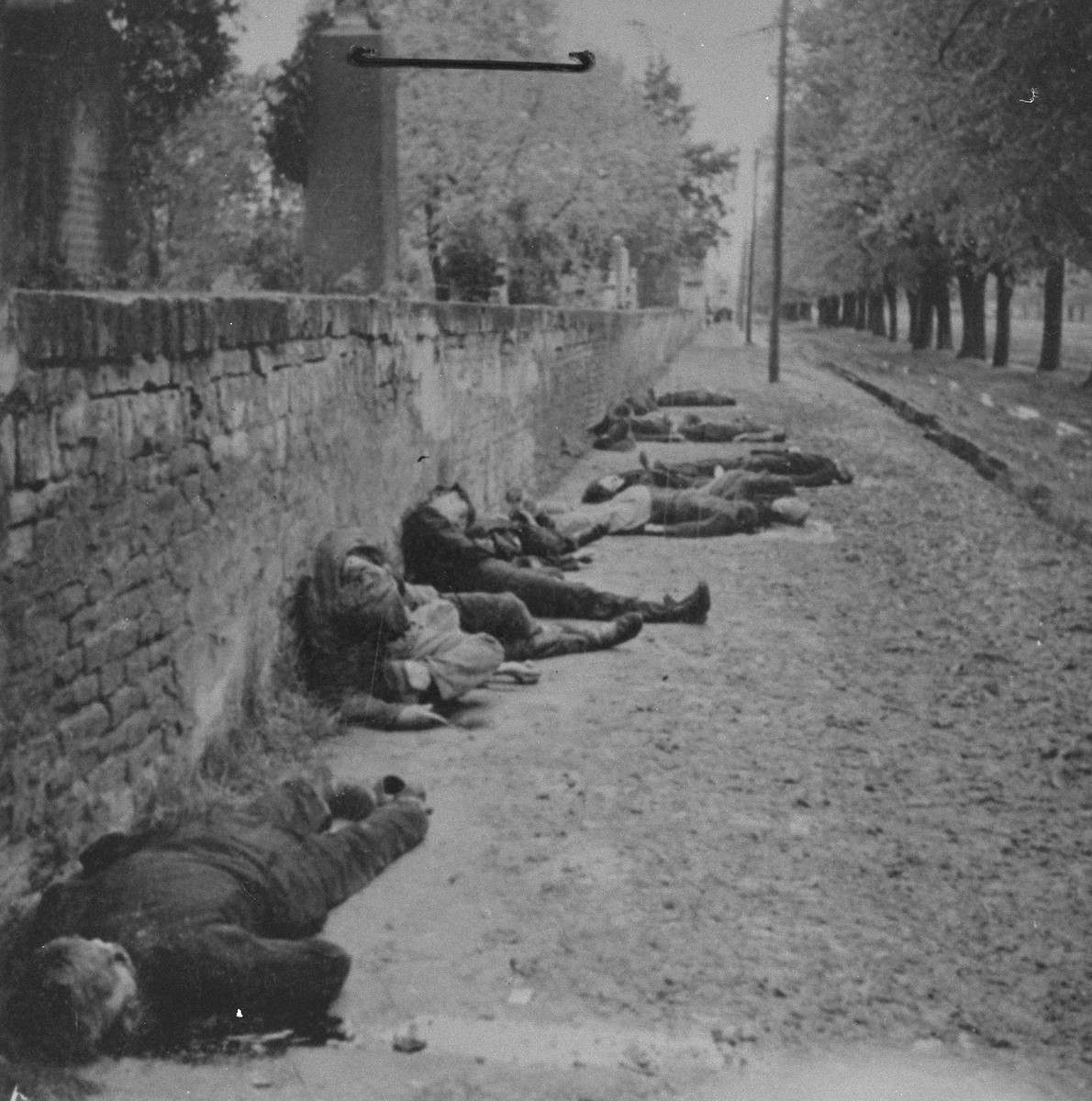 The bodies of civilians shot by German troops lie next to the wall of the Pancevo city cemetery.