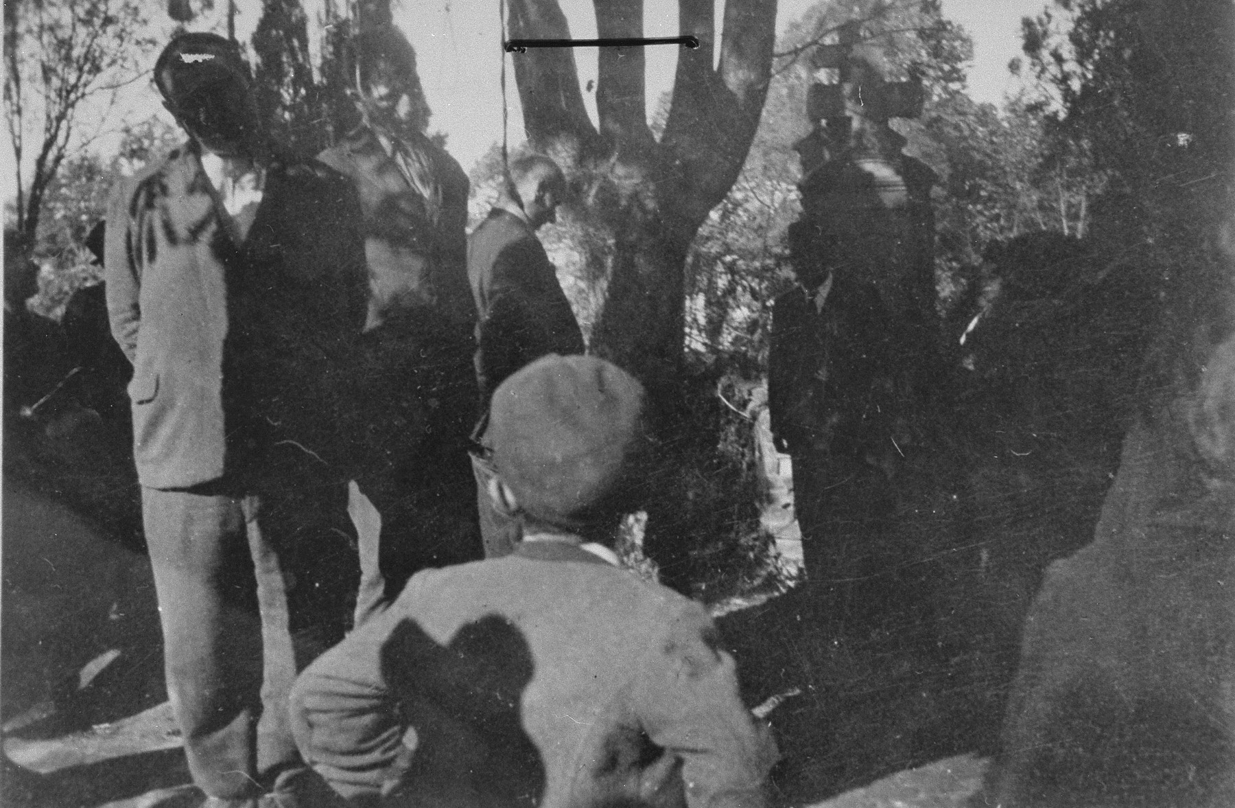 Local residents (a child among them) attend the public hanging of civilians in the Pancevo city cemetery.
