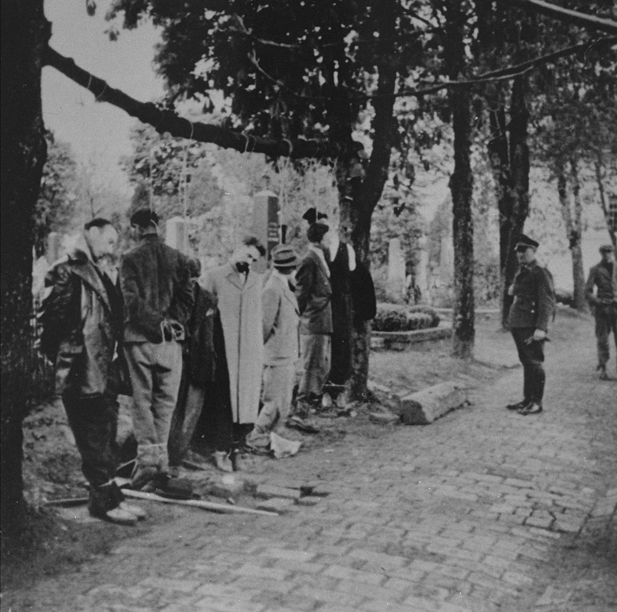 The bodies of civilians executed by German troops hang in the Pancevo city cemetery.    The top hat on the Serb at the extreme right was placed on the man's head by German troops as a joke.