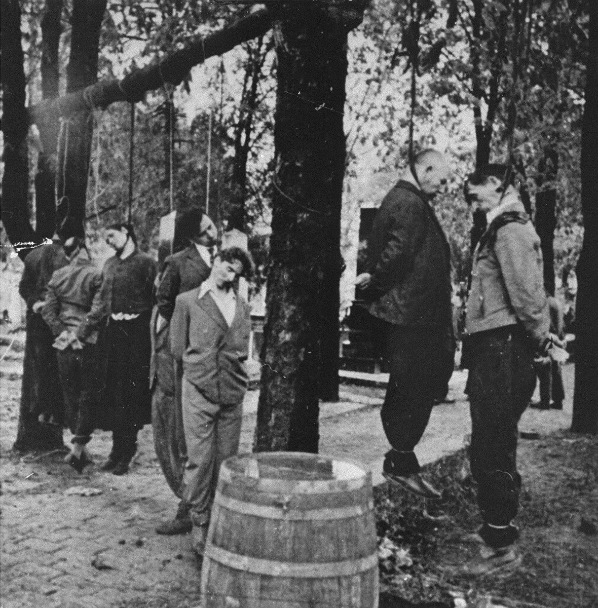 "The bodies of civilians executed by the German army hang in the Pancevo city cemetery.      The woman, whose body is hanging in the middle of the group, owned a restaurant under which the Germans found a tunnel that led to the cemetery and was the suspected escape route for the sniper.  On the back of the photograph, there is a caption in German handwriting: "" (2) The woman was the owner of the restaurant from which a secret passage [660 feet] long led to a cemetery, it passed under the street and ended in a chapel.  Then the German soldiers were shot at night from the cemetery.  All the hanged ones had been caught in the cemetery.""  Captions on the back of photographs, such as this one, taken by  a German military photographer attached to a propaganda unit, were usually supplied by the photographer himself."
