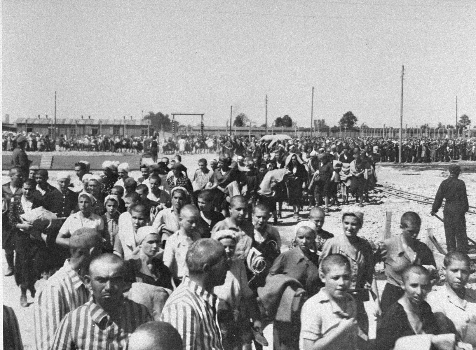 Jewish women from Subcarpathian Rus who have been selected for forced labor at Auschwitz-Birkenau, march toward their barracks after disinfection and headshaving.