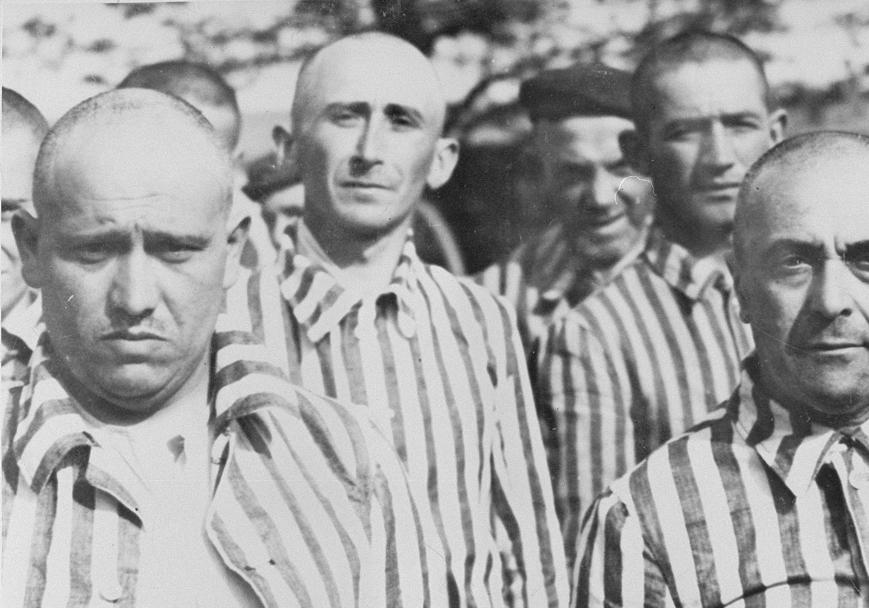 Jewish men from Subcarpathian Rus who have been, selected for forced labor at Auschwitz-Birkenau, stand in their newly issued prison uniforms at a roll call.   Among those pictured is Shimson Falikovics (second from the left) and Istvan Balasza (front, right).