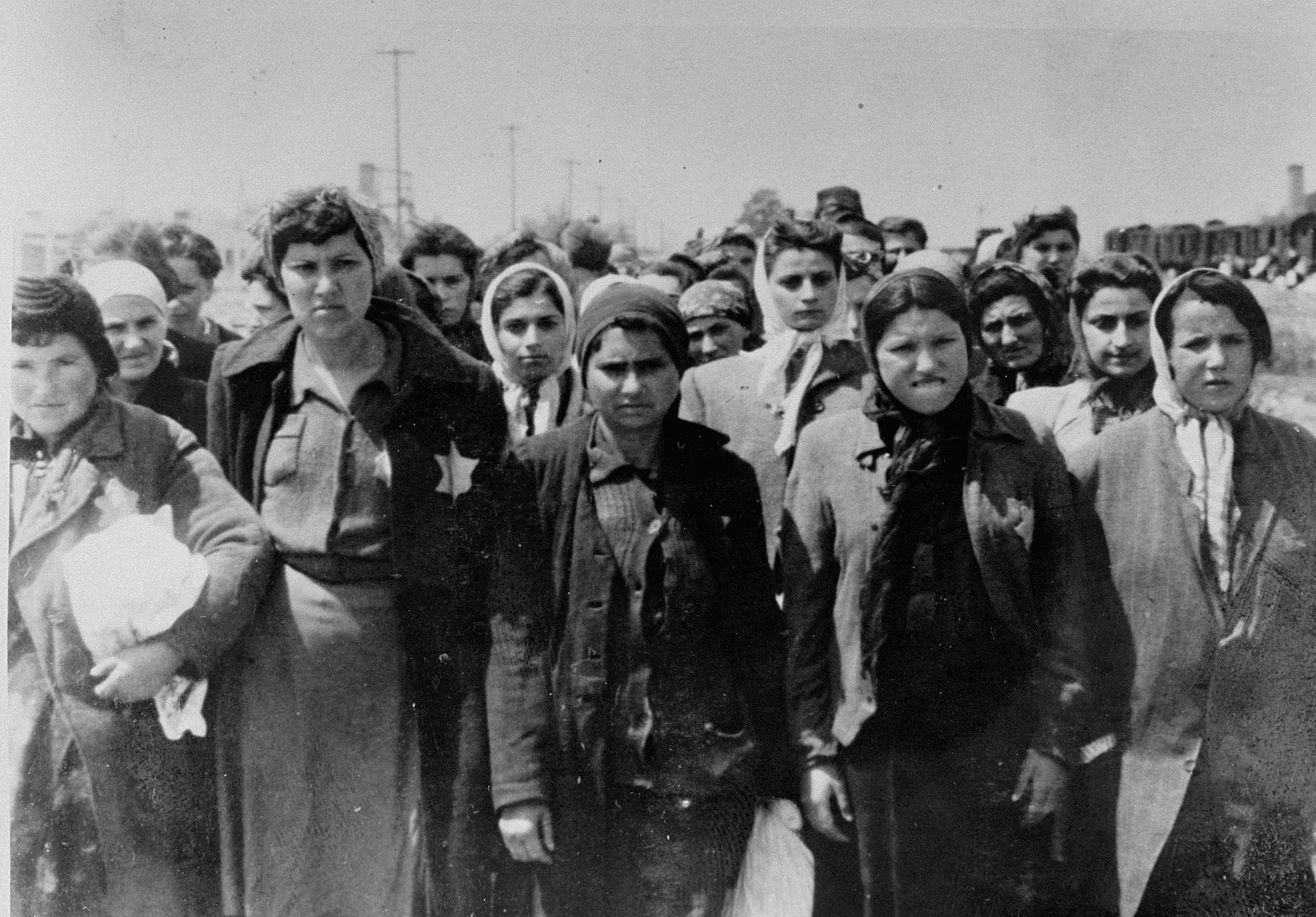 Jewish women from Subcarpathian Rus who have been selected for forced labor at Auschwitz-Birkenau, wait to be taken to another section of the camp.  From left to right (front row) are Laye Moshkovics Gruenglass, Etya Moshkovics, Schprintza Moshkovics Steiner, Zehava Edelstein Avineri, and Margit Edelstein Eckerman.  Laye, Etya and Schprintza were the daughters of Rabbi Shmuel Moshkovics.  Zehava and Margit were twins.  In the second row are Piri, Ester and Blanka Simsovics.