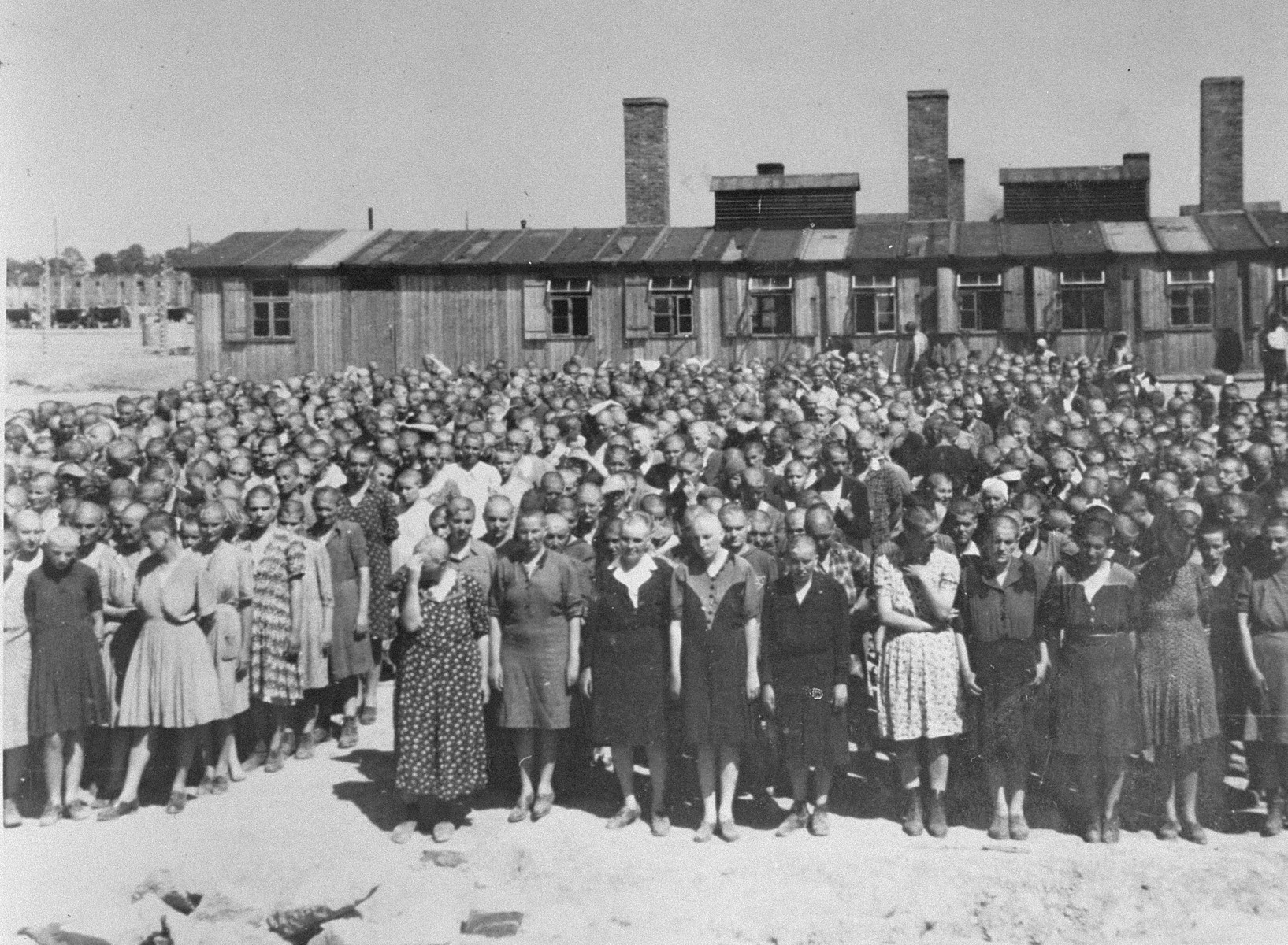 Jewish women from Subcarpathian Rus who have been selected for forced labor at Auschwitz-Birkenau, stand at a roll call in front of the kitchen.   Those pictured include Freda Egri, Ester Erszebet Egri, Rozsi Egri, Zseni Stern, Lili Jacob (first row, second from the left) Magda Roth, Eva Roth and Iren Roth (Magda's mother), and Josephine (Pollak) Fodor (left side along center aisle, wearing a solid colored dark dress, behind woman in light colored dress).