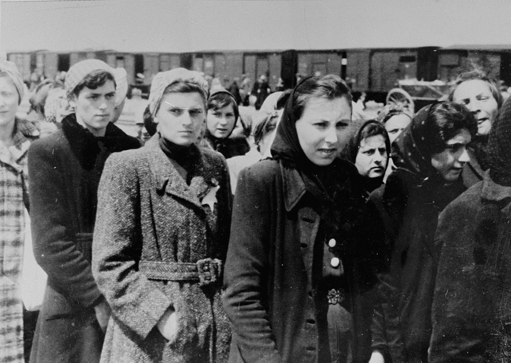 Jews from Subcarpathian Rus who have been selected for forced labor at Auschwitz-Birkenau, wait to be taken to another section of the camp.  Among those pictured is Elki Feig (second from the left) and Malvina Ickovics Einhorn (third from the right, in the back).