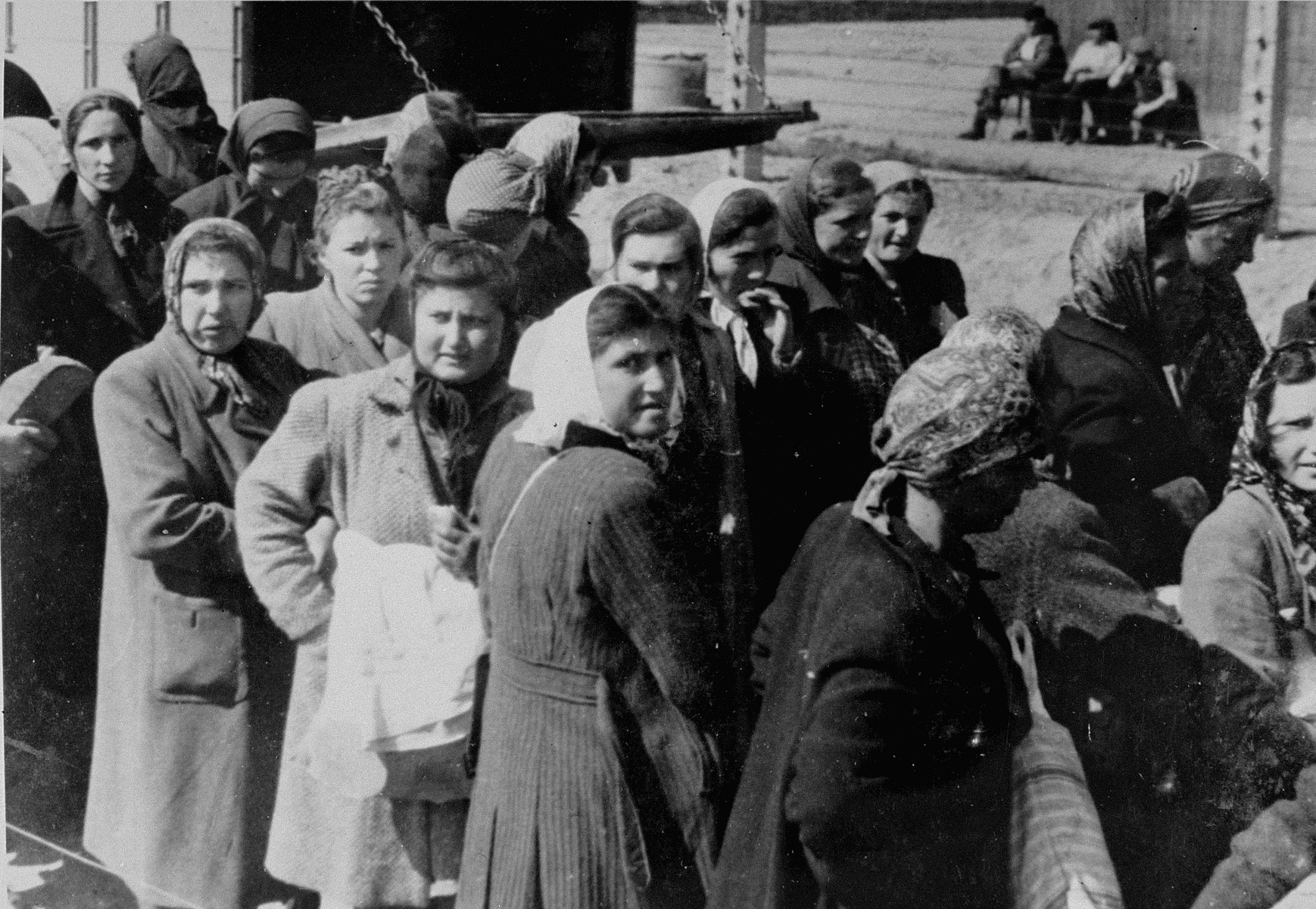 Jewish women from Subcarpathian Rus who have been selected for forced labor at Auschwitz-Birkenau, wait to be taken to another section of the camp.