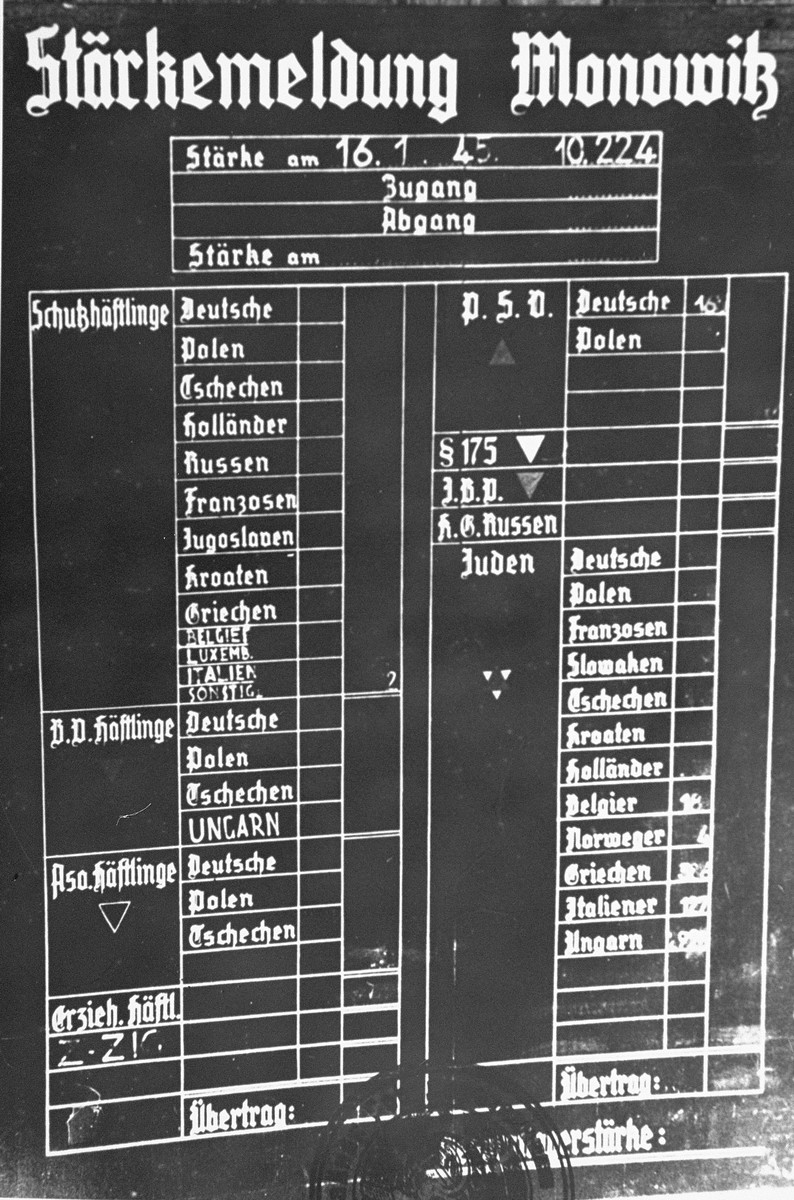 Chart indicating the workforce of the Monowitz camp, categorized by the type and nationality of the prisoners.