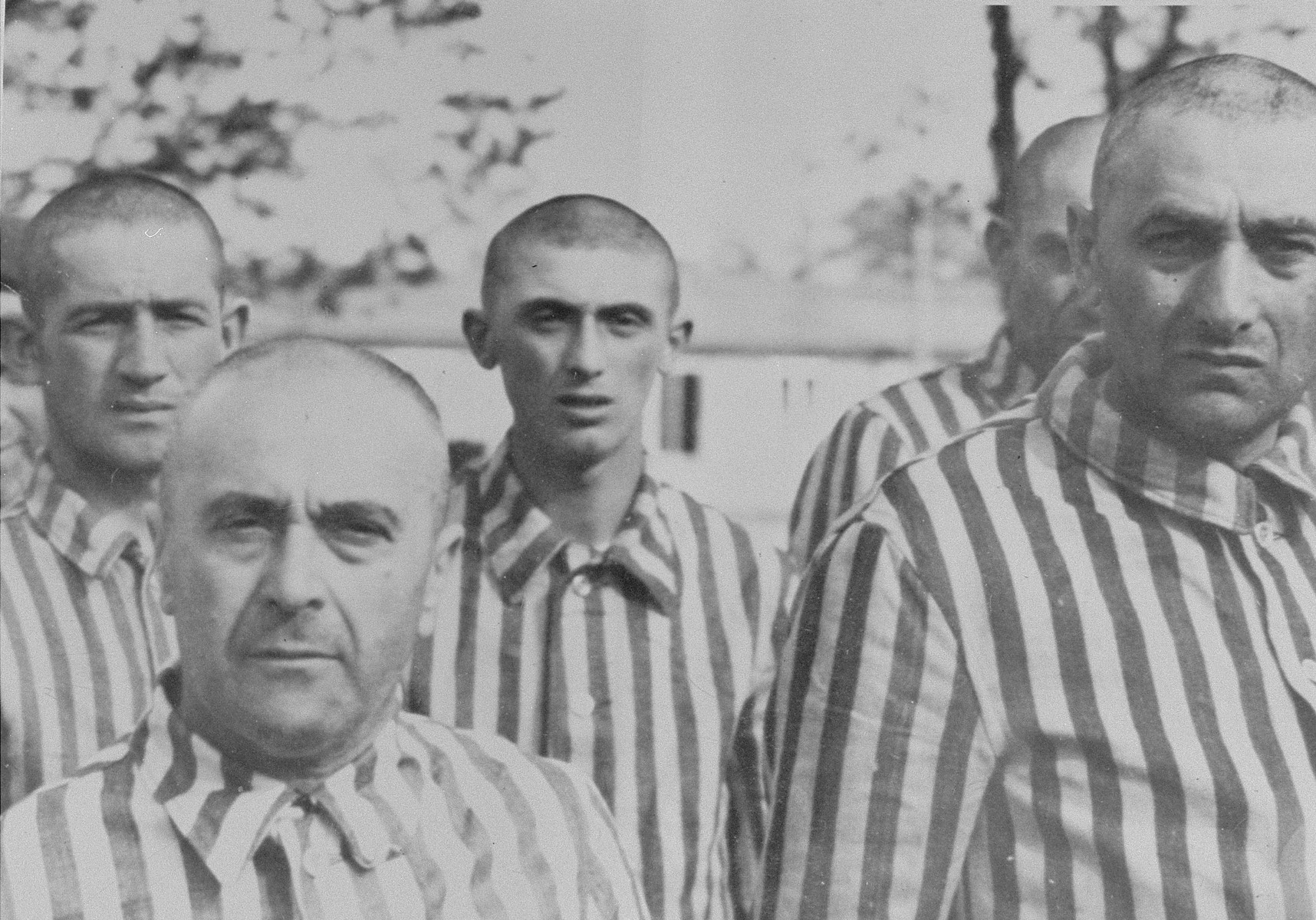 Jewish men from Subcarpathian Rus who have been, selected for forced labor at Auschwitz-Birkenau, stand in their newly issued prison uniforms at a roll call.   Among those pictured is Istvan Balaszo, a pharmacist from Tecso (left).  Next to him is Itzchak Azik Smilovics, and behind them is Moshe Vogel.