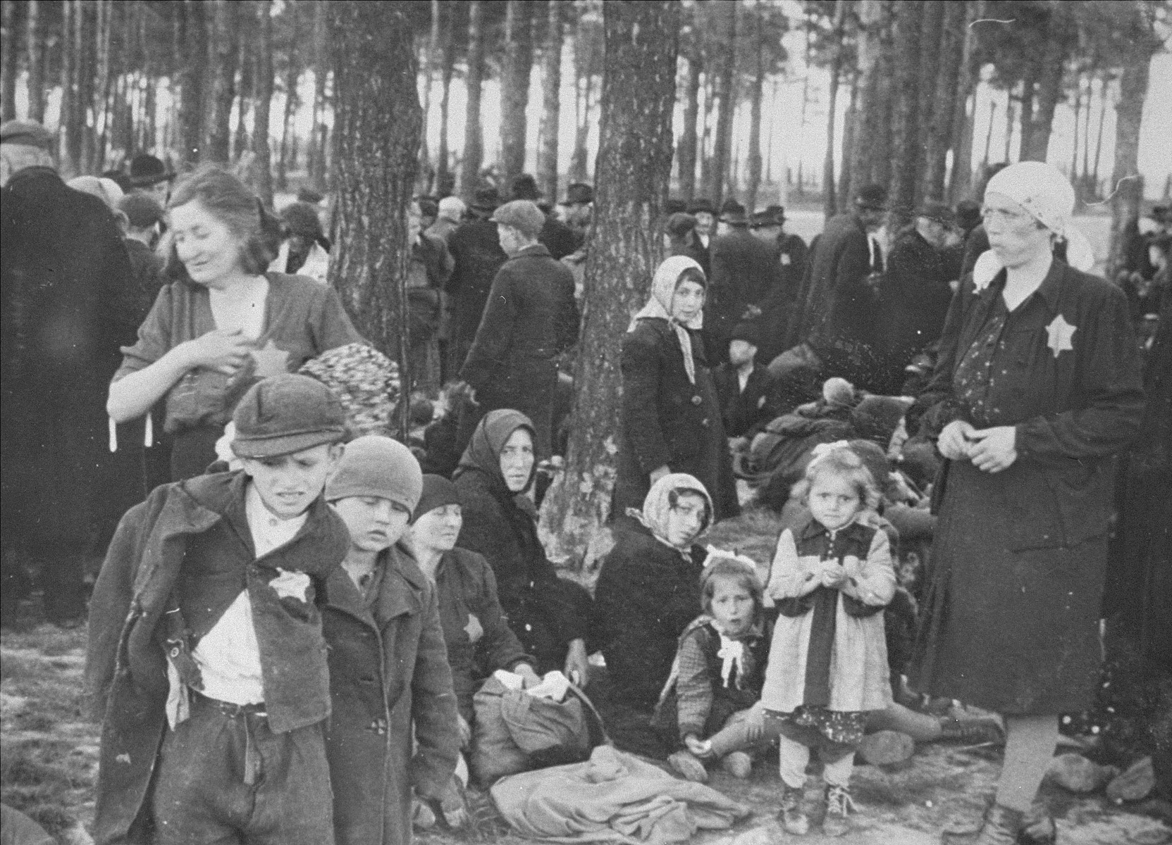 Jews from Subcarpathian Rus who have been selected for death at Auschwitz-Birkenau, wait in a clearing near a grove of trees before being led to the gas chambers.  Pictured on the bottom row from left to right: Reuven and Gershon Fogel, their mother Laja Mermelstein Fogel, Tauba Mermelstein, Tauba's daughter and her granddaughters one of whom was named Gerti.  The Mermelsteins were from Mukacevo.