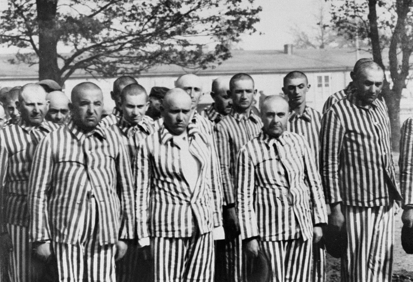 Jewish men from Subcarpathian Rus who have been selected for forced labor at Auschwitz-Birkenau, stand in their newly-issued prison uniforms at a roll call.   Among those pictured are the butcher Salomon Lazar (second row, far left), the pharmacist Istvan Balaszo from Tecso (front row, third from the left), Shimshon Falkovics (back, center), Moshe Vogel (second from the right) and Shmuel Yitzhak Smilovics of Tacavo (far right).