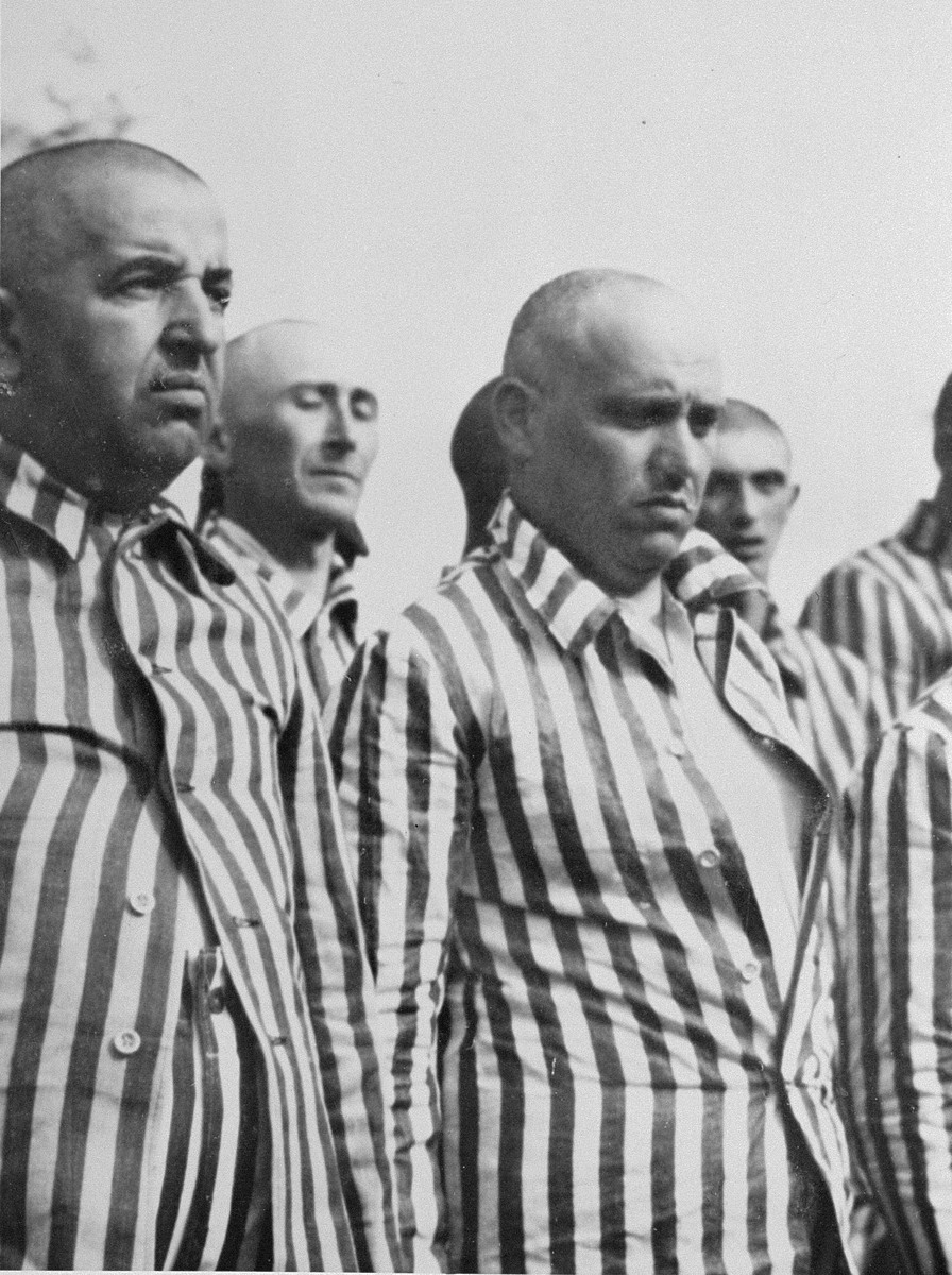 Jewish men from Subcarpathian Rus who have been, selected for forced labor at Auschwitz-Birkenau, stand in their newly issued prison uniforms at a roll call.   Standing in the second row from left to right are Shimshon Falkovics of Tacavo and Moshe Vogel of Tacovo.