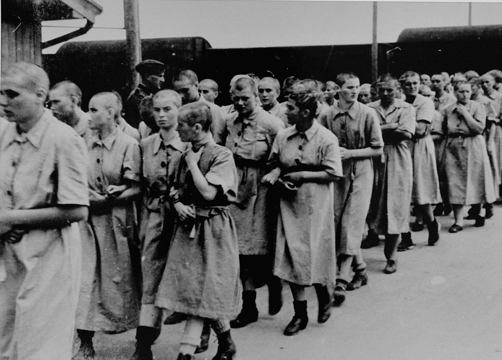 Jewish women from Subcarpathian Rus who have been selected for forced labor at Auschwitz-Birkenau, march toward their barracks after disinfection and headshaving.  Among those pictured are Ella Hart Guttman (in the center with dark hair, in the outside row facing inward) from Uzhgorod and next to her, Lida Hausler Leibovics also of Uzhgorod. The tall woman looking to her left is Eva Fahidi from Szeged.