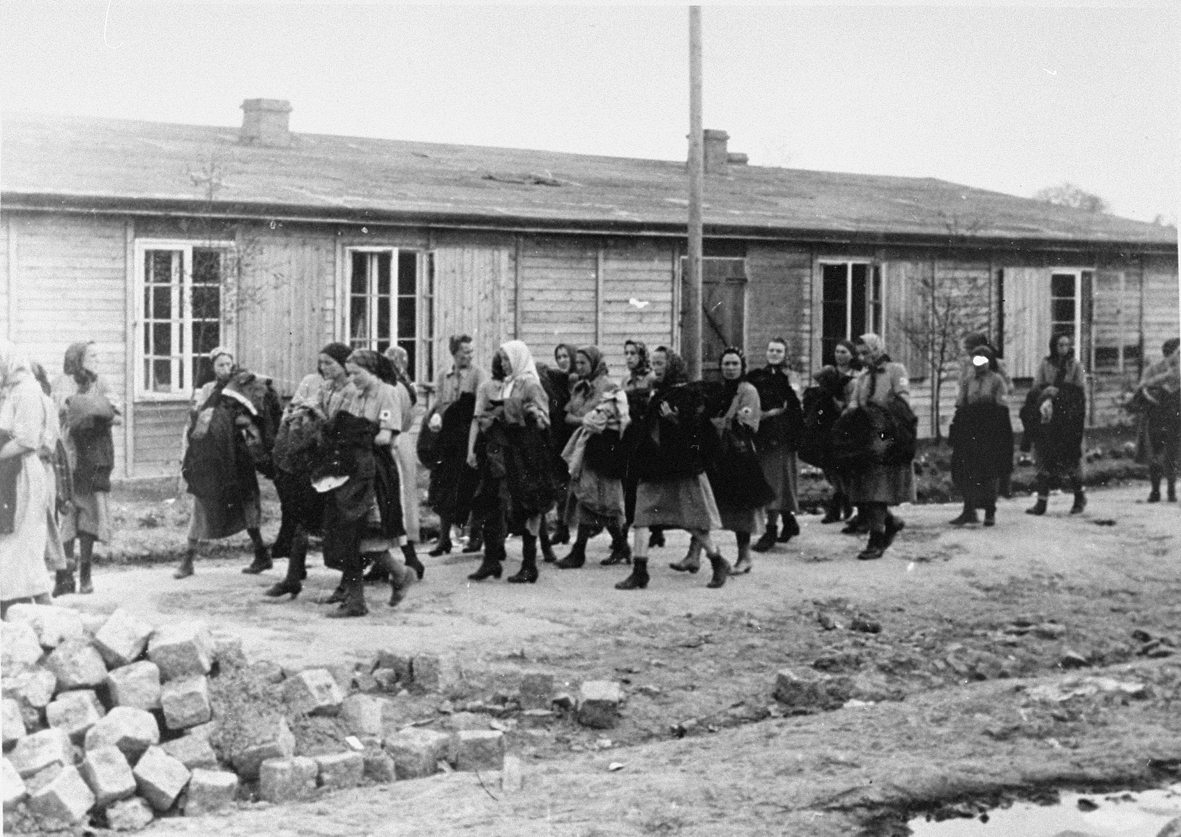 Jewish women from Subcarpathian Rus who have been selected for forced labor at Auschwitz-Birkenau, march toward their barracks after disinfection and headshaving.  According to Leo Cove, these women were on their way to pick up their bread rations. One of these women saved Mr. Cove's mother by pulling her from the line of women selected for death and sticking a loaf of bread in her hands.