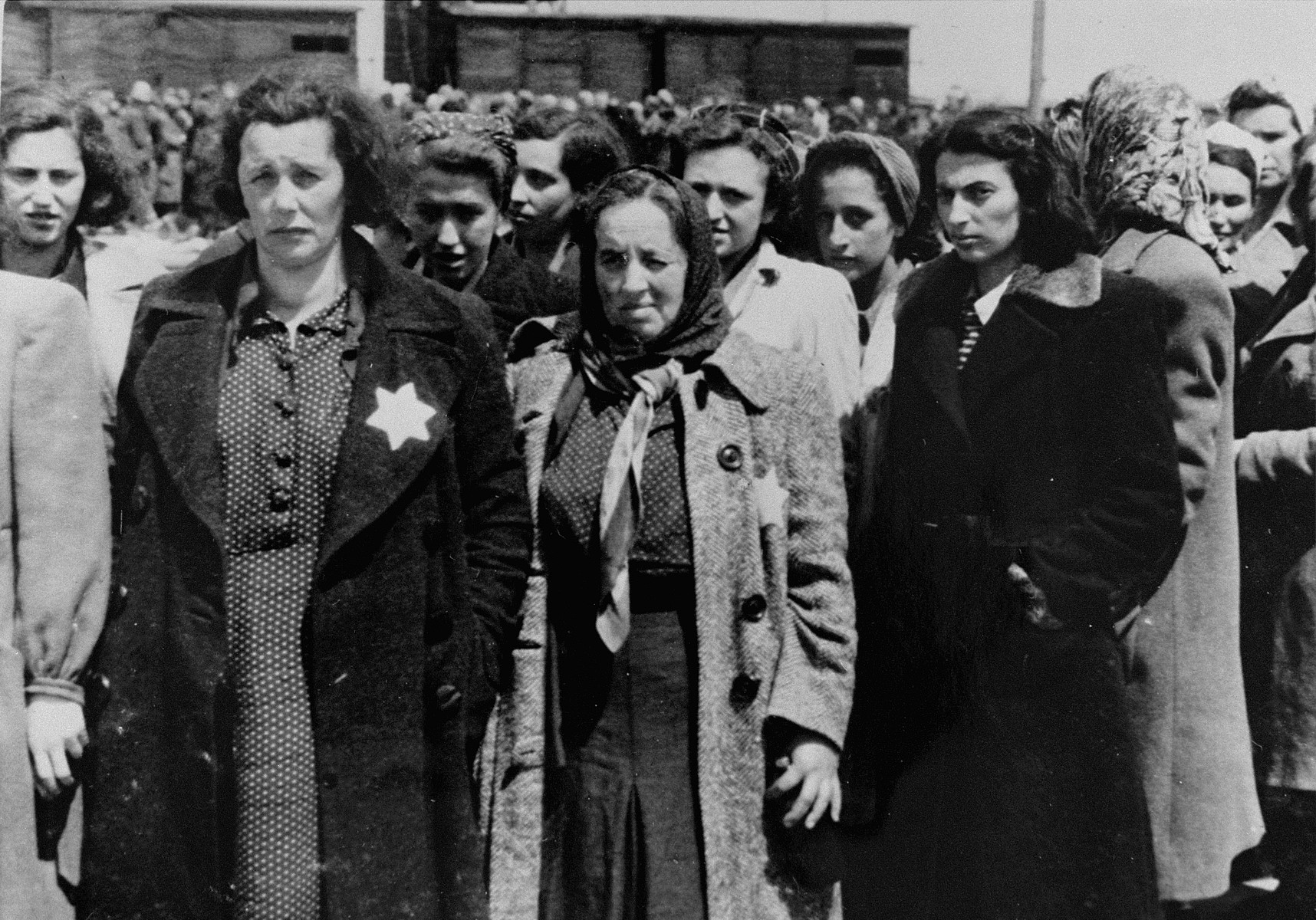 Jewish women from Subcarpathian Rus who have been selected for forced labor at Auschwitz-Birkenau, wait to be taken to another section of the camp.   Pictured in the front left is Mrs. Hegedush.