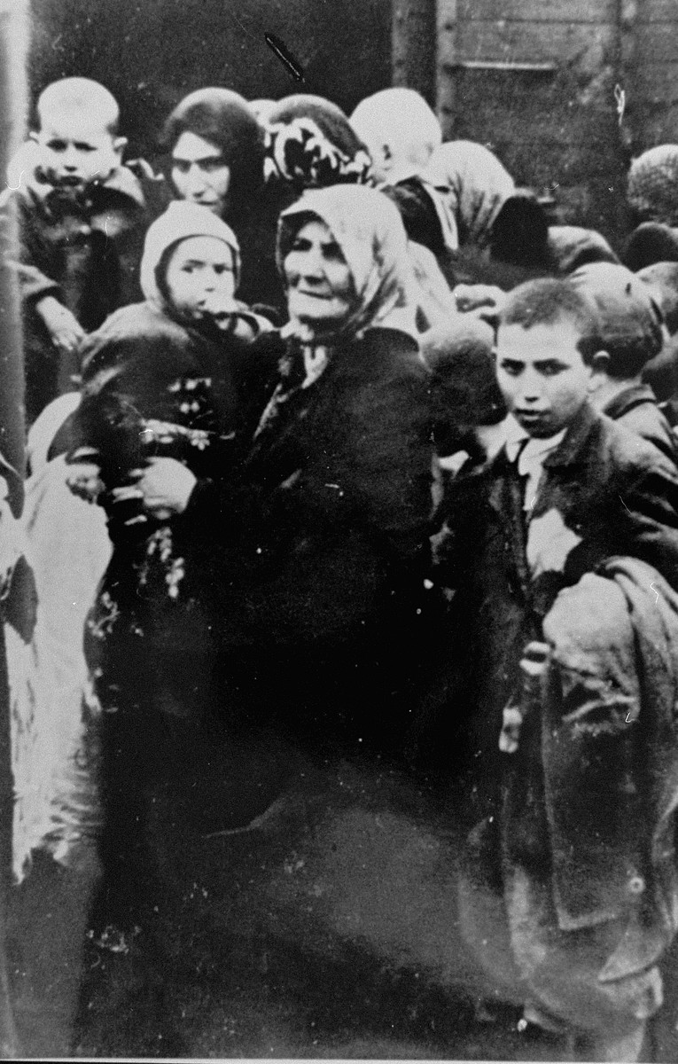 Jewish women and children from Subcarpathian Rus await selection on the ramp at Auschwitz-Birkenau.  Pictured at the left is Rosa Goldenzeil holding her grandson Dani Jakubovitch.  On the right is Armin Riter who had accompanied his mother and sisters to the women's side before rejoining his brothers and father on the men's side.