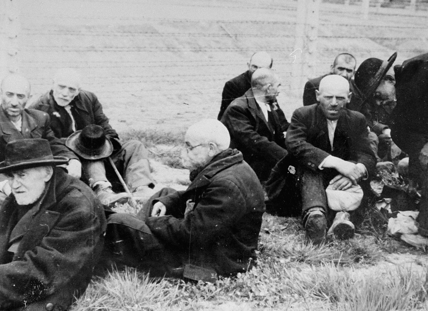 Elderly Jewish men from Subcarpathian Rus sit on the grass in Auschwitz-Birkenau prior to being sent to the gas chambers.