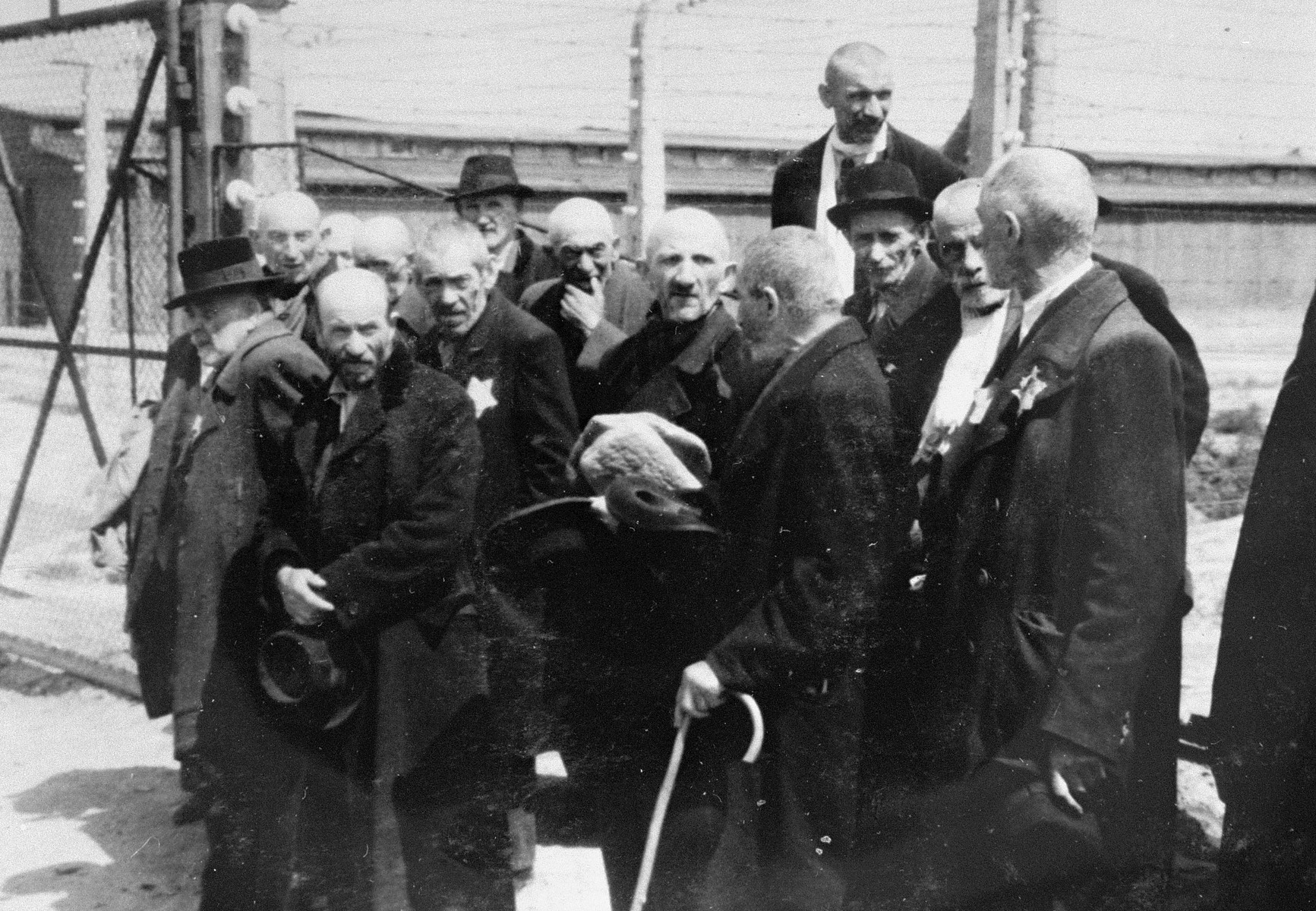 A group of elderly Jewish men from Subcarpathian Rus who have been selected for death, wait to be taken to the gas chambers.