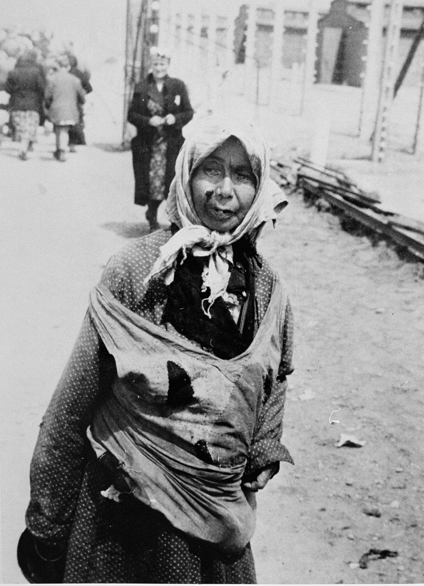 An elderly Jewish woman from Subcarpathian Rus who has been selected for death at Auschwitz-Birkenau, waits to be taken to the gas chambers.