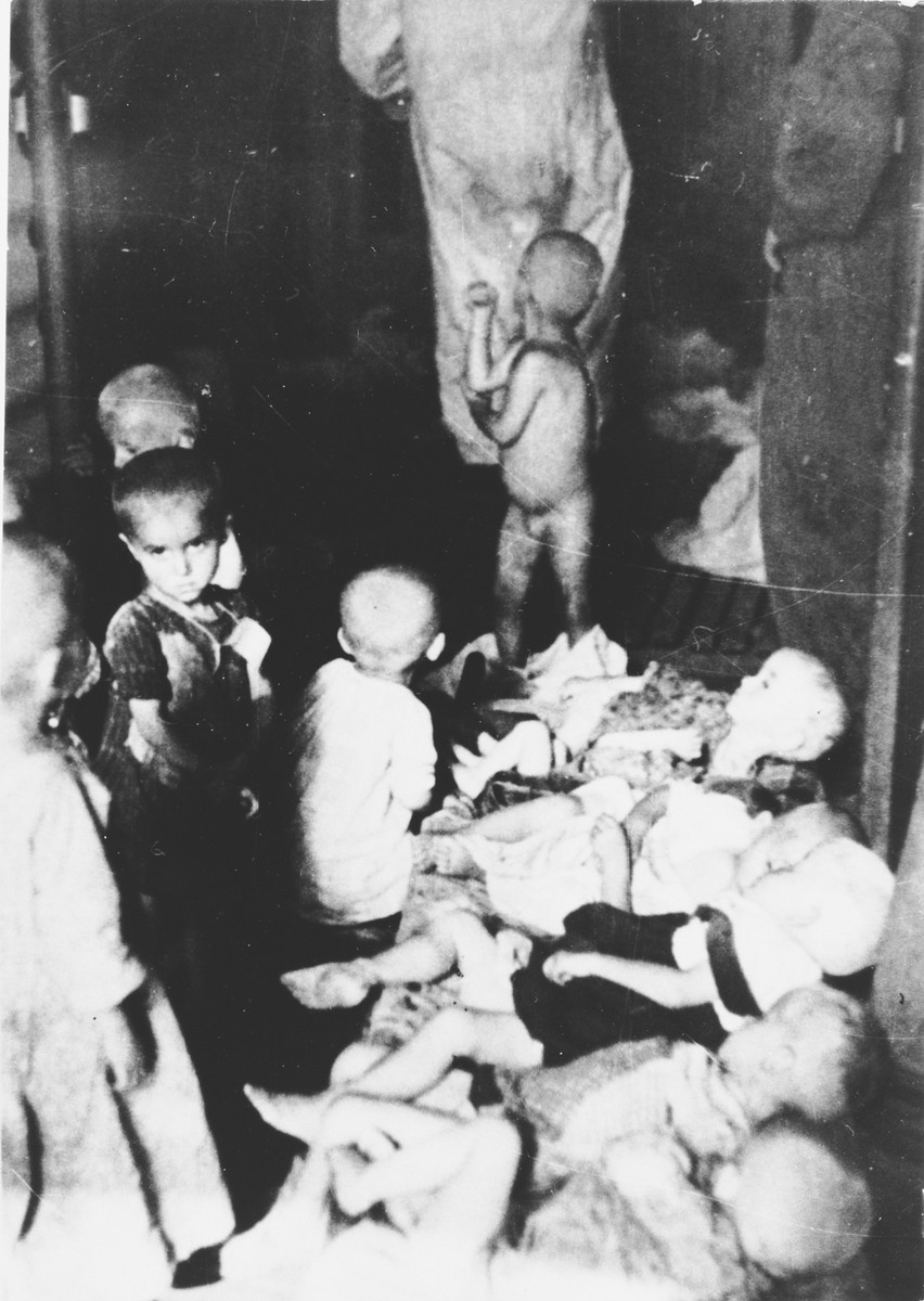 Emaciated children at an unidentified concentration camp in Croatia.