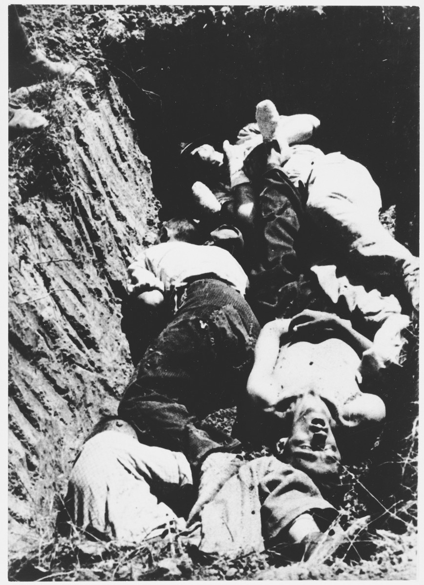Close-up of Ustasa victims lying in a mass grave.