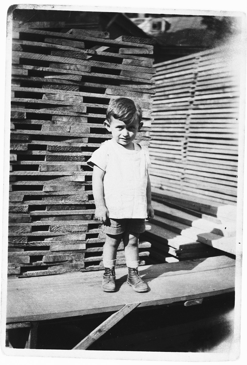 A young Jewish boy poses in front of a stack of lumber in a lumberyard in Rzeszow, Poland.  Pictured is Maurice Friedberg.