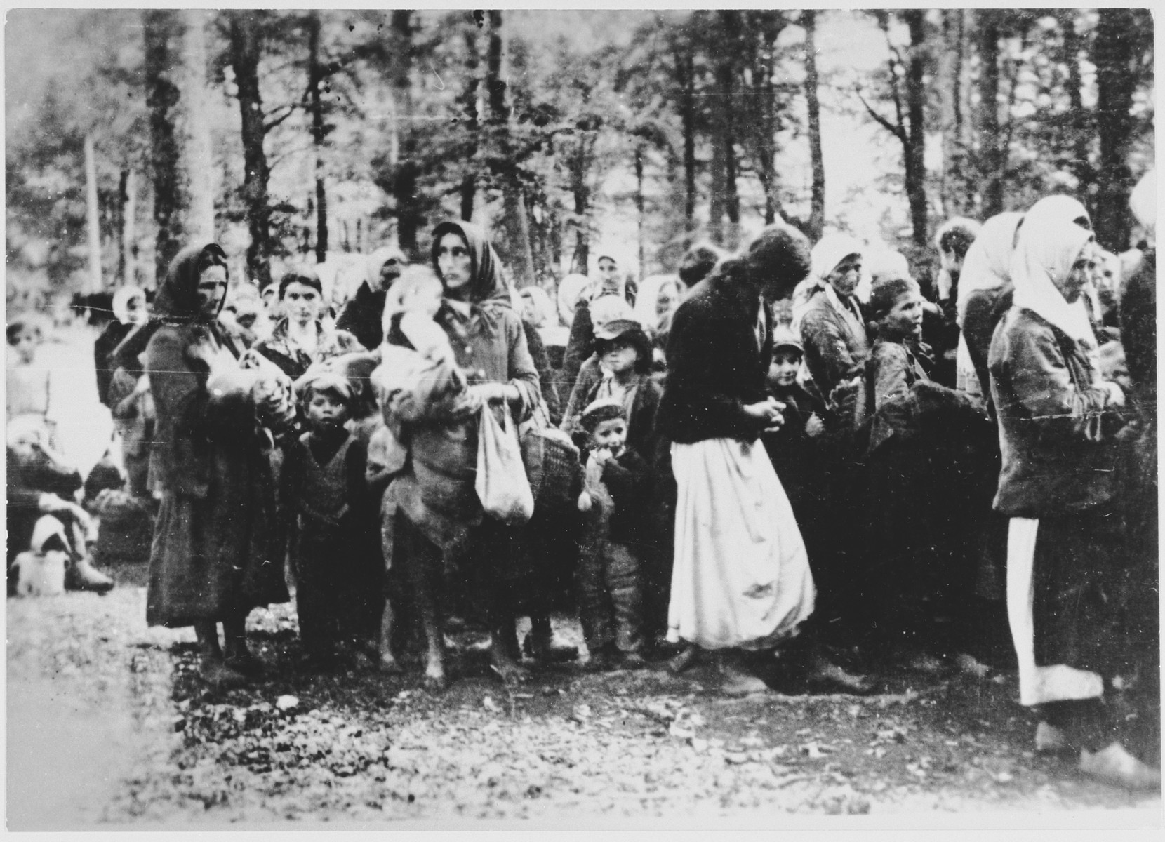Yugoslav women and children are gathered in a wooded area during a deportation action.