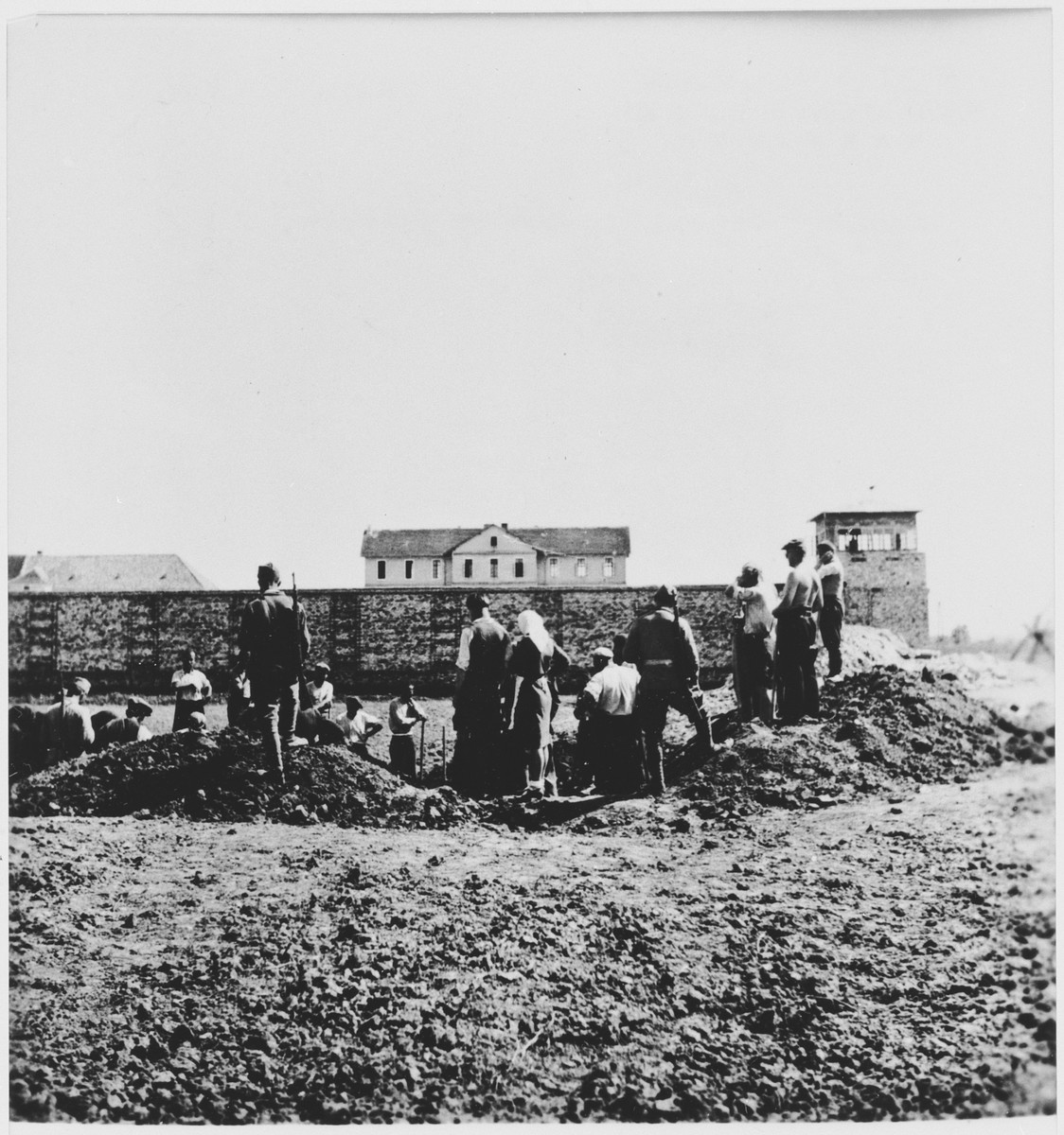 Workers exhume the bodies of former prisoners from a mass grave at the Stara Gradiska concentration camp.