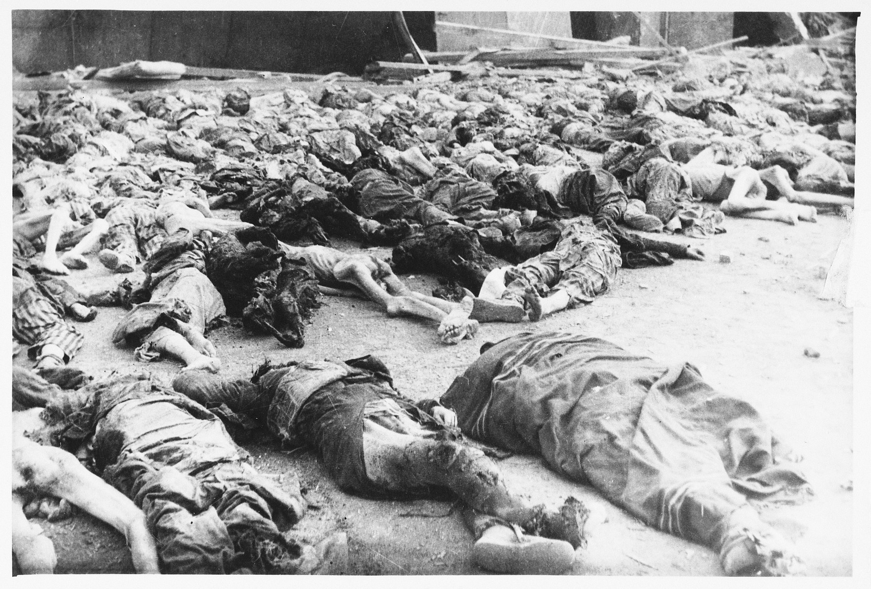 View of corpses lying on the ground of the Nordhausen concentration camp following liberation.