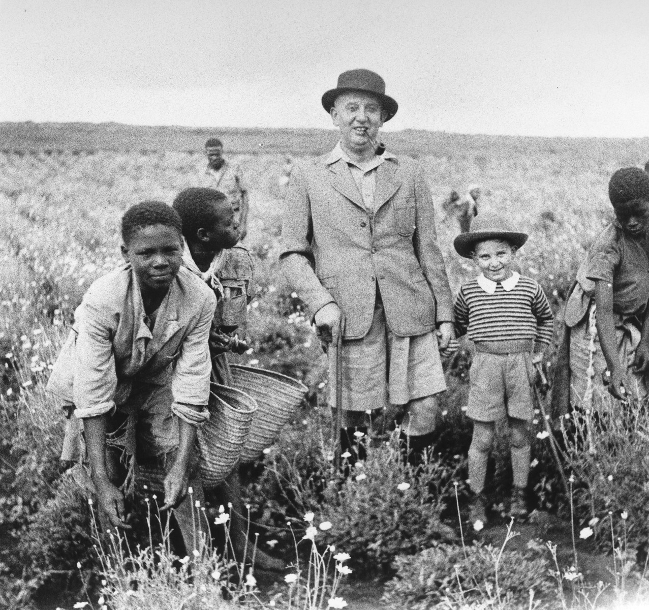 Ernest Berg and his son Philip, Jewish refugees from Germany, pose in a pyrethrum field in Limuru, Kenya, with their African farmhands.  Pyrethrum was used as an insecticide.