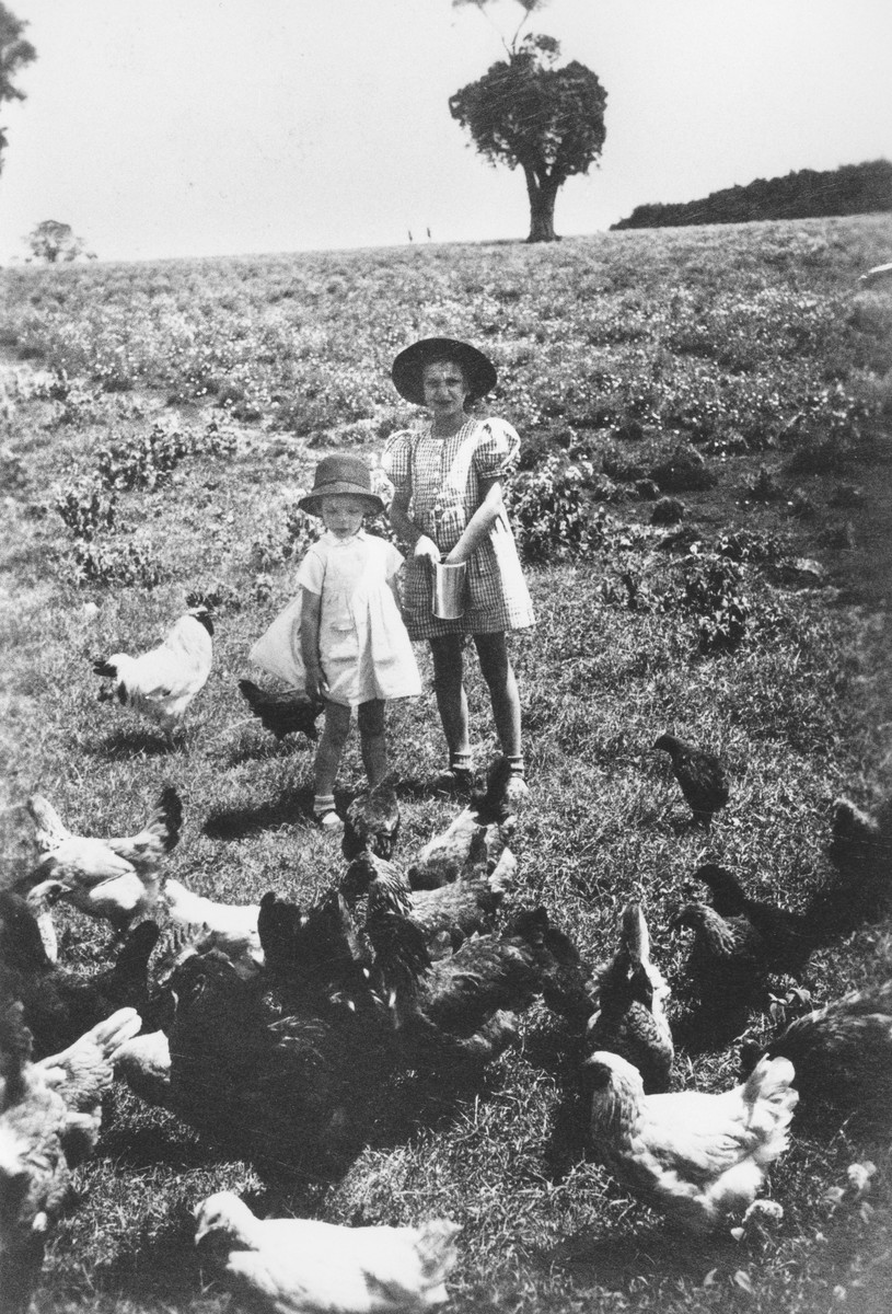 Two Jewish refugee children feed the chickens on their family's farm near Limuru, Kenya (Kiambu district), where they found refuge during World War II.  Pictured are Gisela Berg (right) and Hannah Mandlebaum (left).