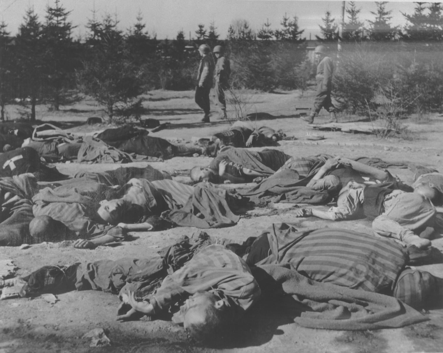 American soldiers walk past the bodies of Ohrdruf prisoners who were killed during the evacuation of the concentration camp.